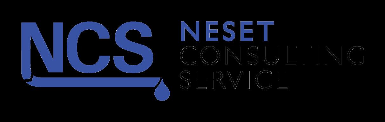 nesetconsulting.com